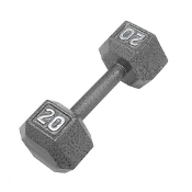 20 LB Cast Iron Hex Dumbbell