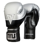 Title Interrogate Boxing Gloves - Silver