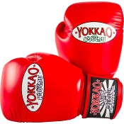 Yokkao Matrix Thai Boxing Gloves - Red